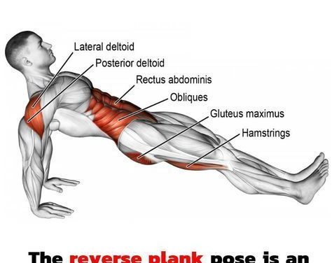 Reverse Plank! The best glider exercise to use in a core and full body workout.  #planks #workout #fitness